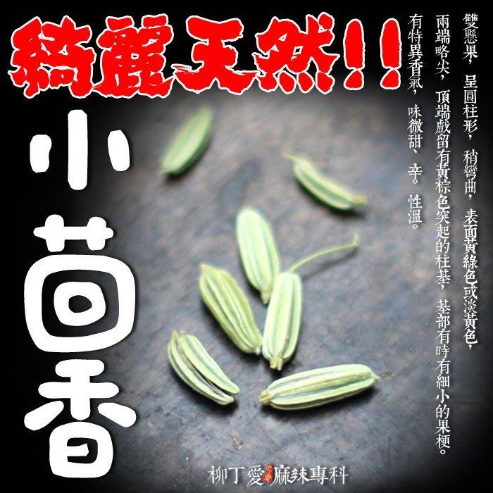 柳丁愛☆小茴香100g【A165】