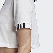 南◇2020 5月 Adidas ORIGINALS CROPPED TEE FM2516 白 短版 休閒上衣 女款