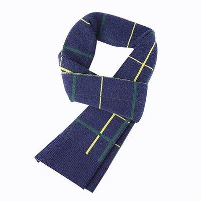 圍巾 針織披肩-時尚格紋提花羊毛男配件2色73wi71[獨家進口][米蘭精品]
