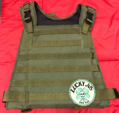 MOLLE MBSS SAPI Carries - Green