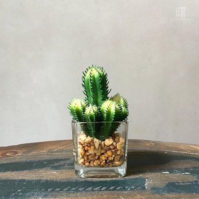 【曙muse】仿真仙人掌盆栽 多肉植物 玻璃盆栽 創意擺飾 Loft 工業風 咖啡廳 民宿 餐廳