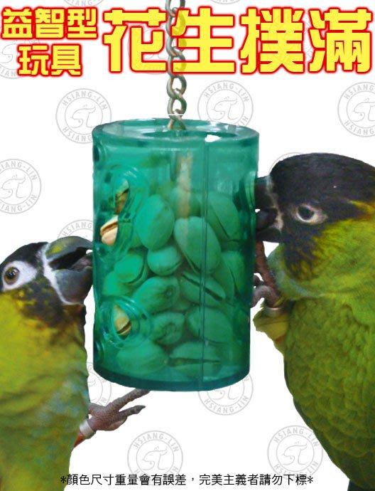 *中華鳥園*益智型玩具-花生撲滿(大)/壓克力玩具/益智玩具/鸚鵡玩具