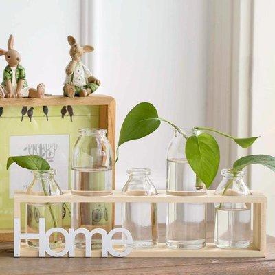 水培綠蘿餐桌客廳裝飾實木架玻璃花器擺件 透明玻璃小花瓶花插