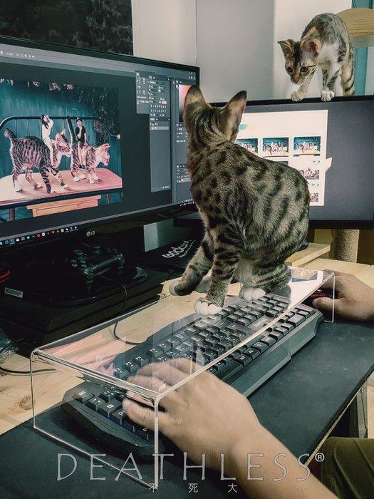 加長加厚款【Mr.DL】神器!!防貓鍵盤罩/防貓咪鍵盤罩 台灣製造 大推~防貓踩透明鍵盤蓋 電腦救星 貓奴必備 可客製化