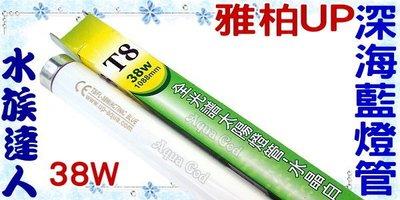 【水族達人】【T8燈管】雅柏UP優質《深海藍燈管˙38W》超明亮!