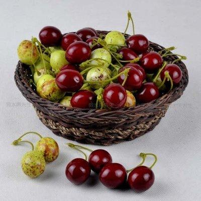 [MOLD-D005]高仿真小水果假水果蔬菜模型 耳環頭飾工藝品配件 仿真紅棗