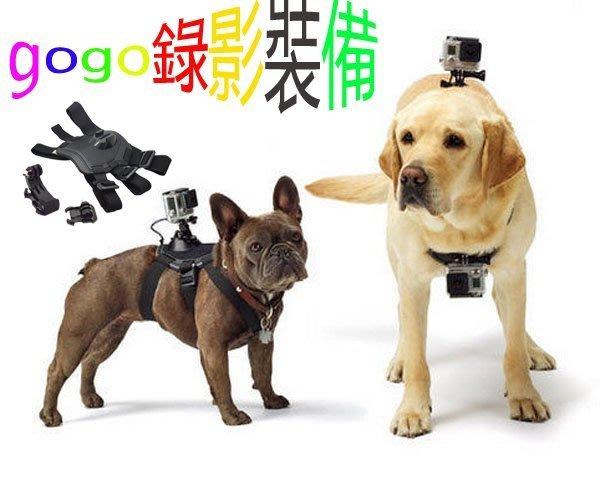 清倉特價 現貨 狗狗錄影裝備配件 gopro Hero4/3+/3配件原裝寵物狗胸帶 狗狗錄影胸前固定背/肩帶