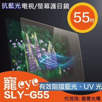 送清潔組【寵eye】55吋 抗藍光液晶電視/螢幕護目鏡 (SLY-G55)