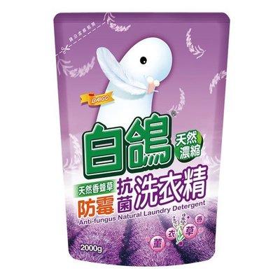 【亮亮生活】ღ 白鴿 防霉抗菌洗衣精 補充包2000g ღ 有效防止衣物上黴菌滋生 去霉味