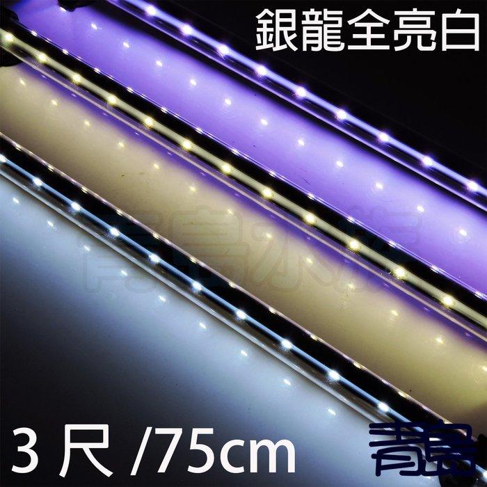 五月缺Y。。。青島水族。。。SLI-90W 顯色燈水中 LED 水中燈 龍魟 神仙 熱帶魚==全亮白3尺75cm