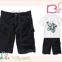 【B& G童裝】正品美國進口GAP 大童寶藍色燈芯絨短褲16號14UPyrs