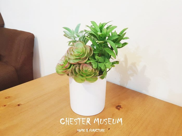 【現貨】白莎 仿真花 塑膠花 仿真植物 塑膠植物 永生花 假花 假植物