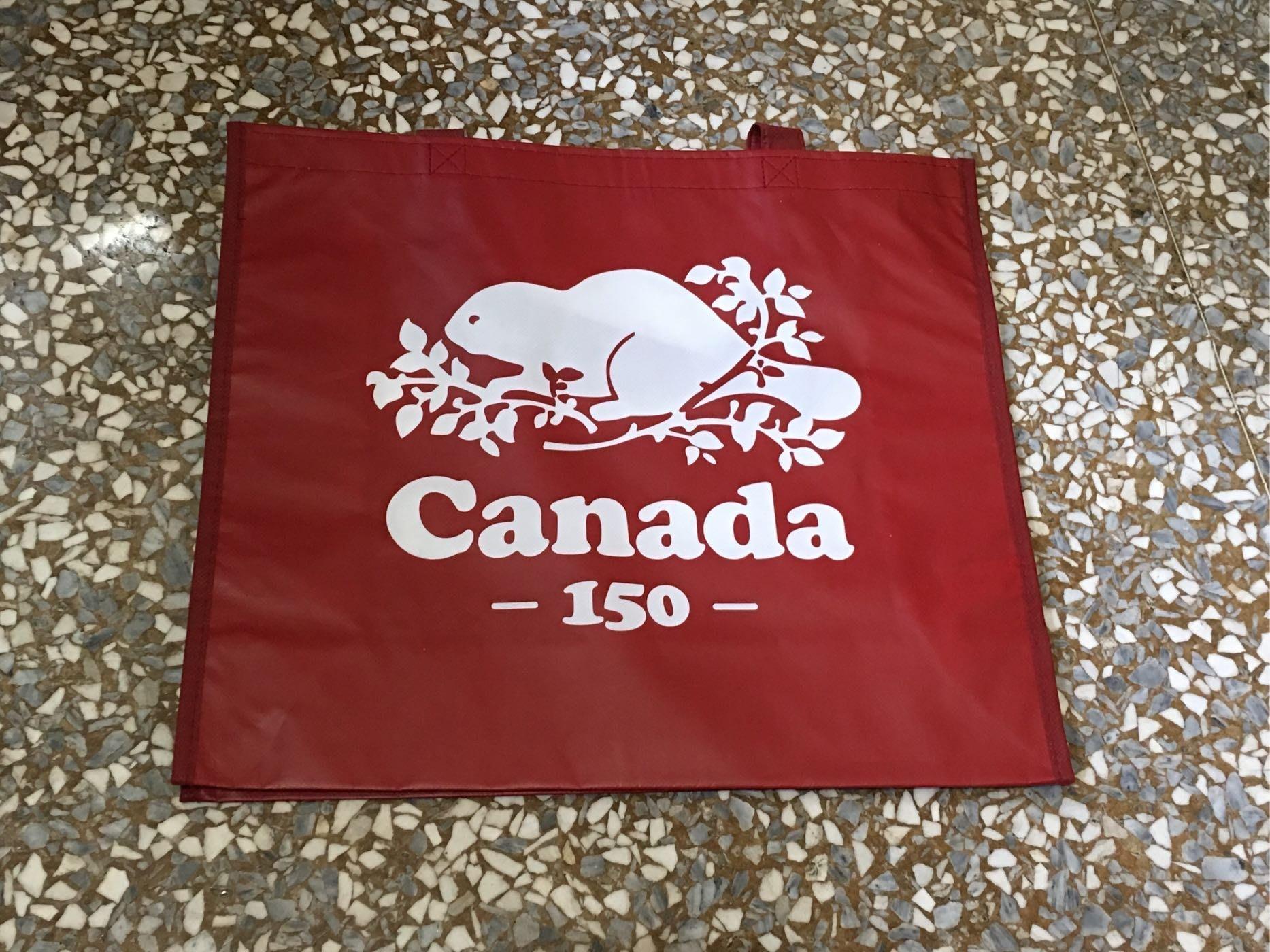 ~☆.•°莎莎~*~☆~~加拿大ROOTS 150週年慶環保袋~現貨(大)