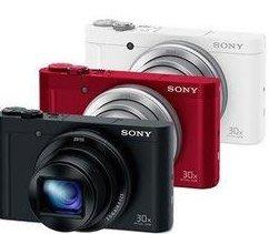 SONY DSC-WX500 全新公司貨 數位相機 30倍變焦 廣角 【贈原廠包】現-855