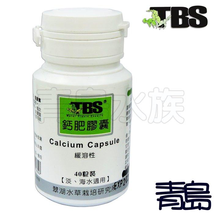 。。。青島水族。。。AF019台灣TBS翠湖---底床 鈣肥膠囊(局部添加鈣肥)==40錠