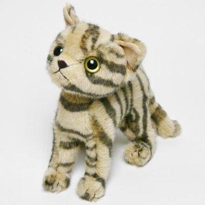 娃娃~japan貓咪 貓娃娃f日本製造 貓玩偶 貓娃娃DK-23 06XAA