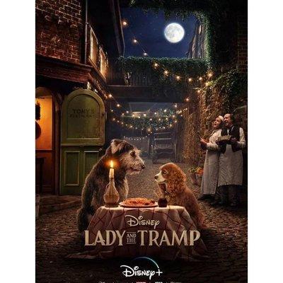 新品特惠~現貨秒殺~電影《小姐與流浪漢 Lady and the Tramp(真人版)》xjp322934