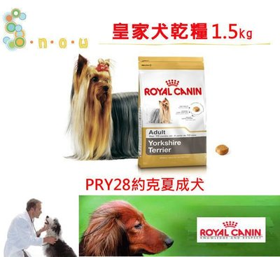SNOW的家 【快速出貨】【限時特惠】法國皇家 PRY28約克夏成犬1.5kg(80070045