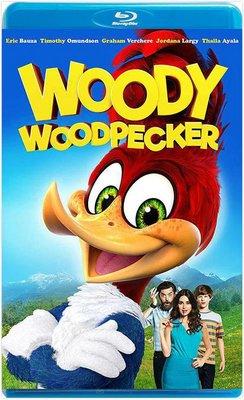 【藍光電影】啄木鳥伍迪  WOODY WOODPECKER (2017)