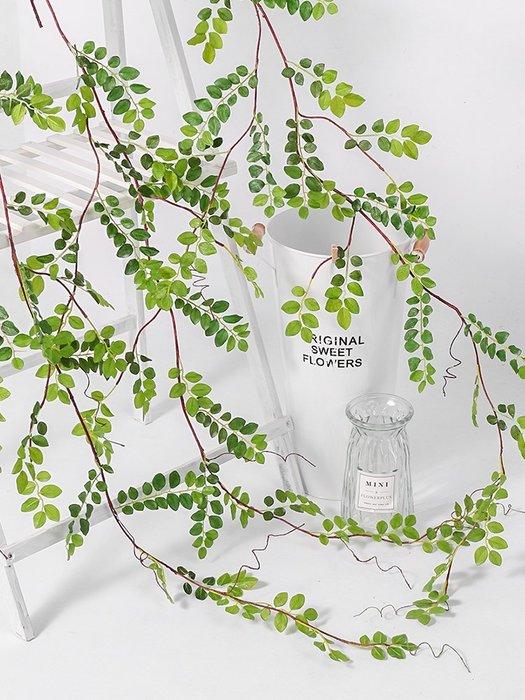 人造花 塑膠花 假花 場景設計  仿真柳葉榆樹葉假花藤條綠葉造景吊頂裝飾藤蔓綠植塑料樹葉子管道