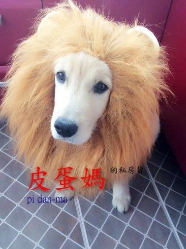 【皮蛋媽的私房貨】DEC0053變身頭套 寵物變身帽-動物帽-獅子王/獅子帽/獅子頭套-拉不拉多/柴犬/黃金狗假髮-耳朵
