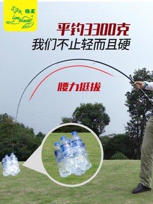 台北百貨店 海竿 海桿套裝組合全套遠投竿超硬輕海釣魚竿甩桿拋竿特價漁具