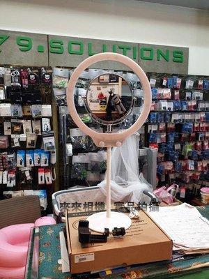 來來相機 Zomei 美妝雙色溫環燈含鏡子(白) 彩妝 直播主、部落客