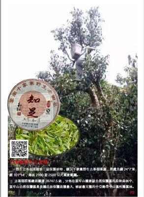 吻潤知足2017年千家寨野生普洱茶25...