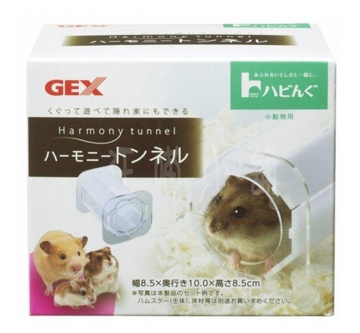 ☆汪喵小舖2店☆ 日本 GEX 鼠用超堅固壓克力隧道 037282 // 適合所有小型寵物鼠、黃金鼠