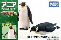 TAKARA TOMY ANIA 探索動物 多美動物園  AS-11 國王企鵝2個 (翅膀可動)貨號AN82248