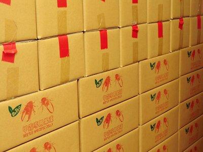 ***甲蟲王國***-NO.J1992-01-甲蟲專用高營養果凍(黑糖香蕉口味X350顆,6公斤整箱下標區)