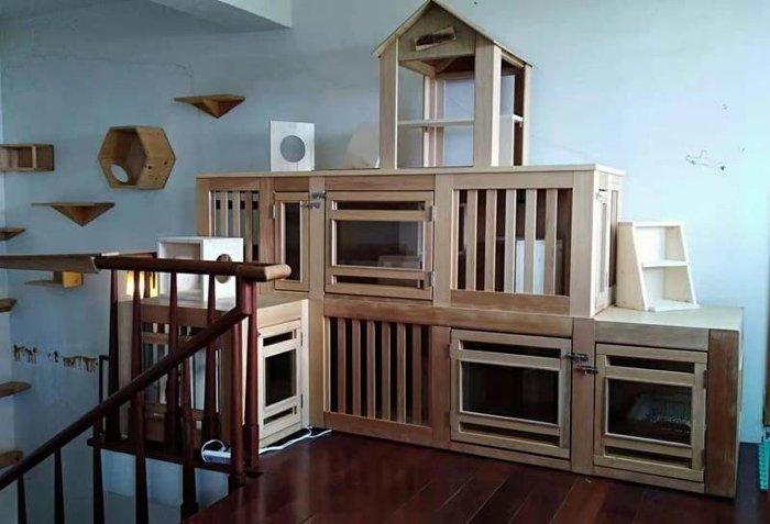 豪華貓屋,三層樓可自由來去也可分層,絕對品質。