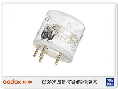 ☆閃新☆GODOX 神牛  ES600P 燈管 (不含磨砂燈罩) (ES600P-FT,公司貨)