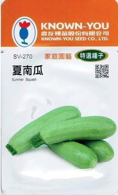 四季園 夏南瓜 Summer Squash (sv-270) 淺綠色 【蔬果種子】農友種苗特選種子 每包約10粒