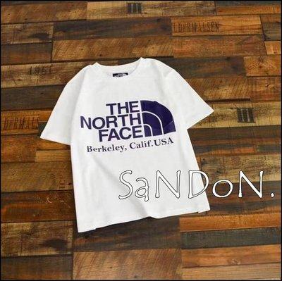 山東:THE NORTH FACE 北臉紫標 H/S Logo Tee 短袖TEE 21ss SLY 210519