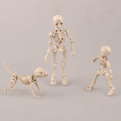 Pose Skeleton Q版3款 體關節可動 骷髏頭 手機掛件 盒裝擺件 遇見良品G67RTD