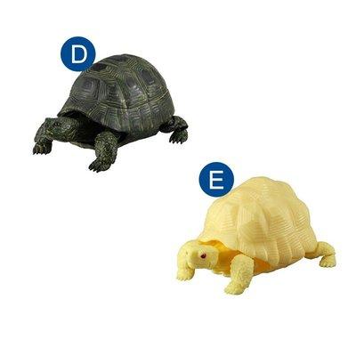 單售 可動烏龜 造型轉蛋 02 扭蛋 轉蛋 造型扭蛋 環保蛋殼 動物模型 BANDAI 萬代【510338】 台北市