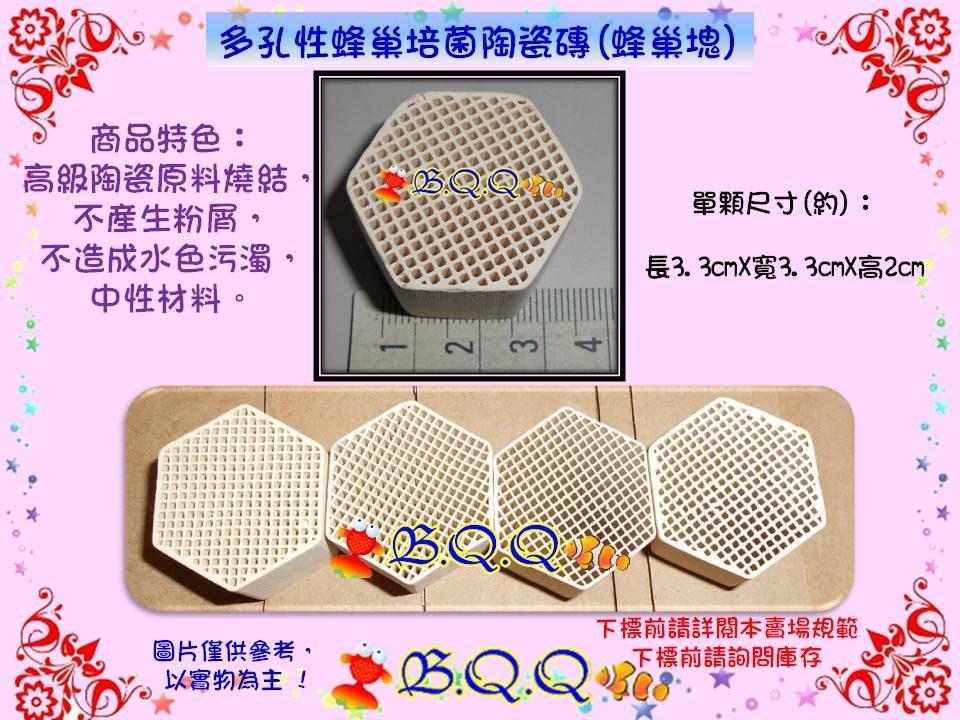 [B.Q.Q小舖]多孔性蜂巢培菌陶瓷磚(蜂巢塊)【1個/散售】大幅增強硝化菌繁殖的最好濾材