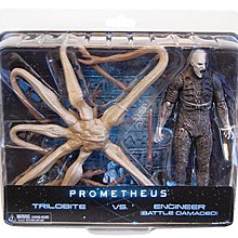 Alien Neca figure Prometheus engineer 異型 大戰 三葉蟲 工程師 人偶 玩具