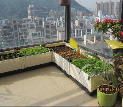 三代特大型種植箱陽台種菜盆設備長條形花...