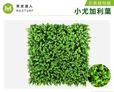 【草皮達人】小尤加利葉-大片裝 仿真植物牆(300元/片,整箱10片特價2800含運)園藝 景觀 裝潢 空間佈置 設計