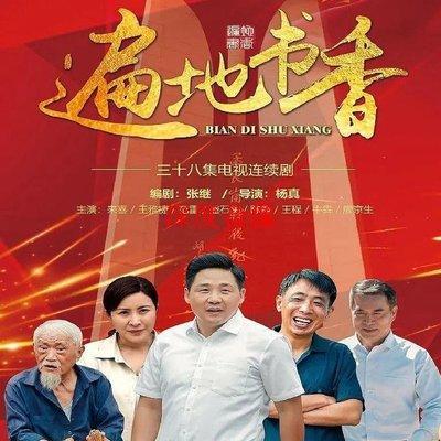 【深度音像店】遍地書香 2020當代農村電視劇dvd碟片視頻機光盤來喜 王雅捷 精美盒裝