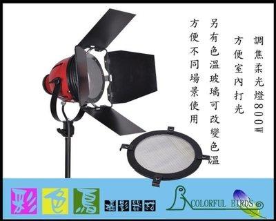彩色鳥 (燈光出租 紅頭燈 錄影燈 出租) 攝影燈 調焦柔光燈+氣壓腳架+650W 燈泡 台北市