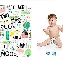 【2️⃣號現貨】 The Honest 環保 有機 無毒 嬰兒 尿布