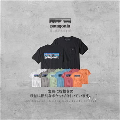 *ZEUS*Patagonia P-6 Logo Pocket Responsibili Tee/背殺LOGO單口袋T恤