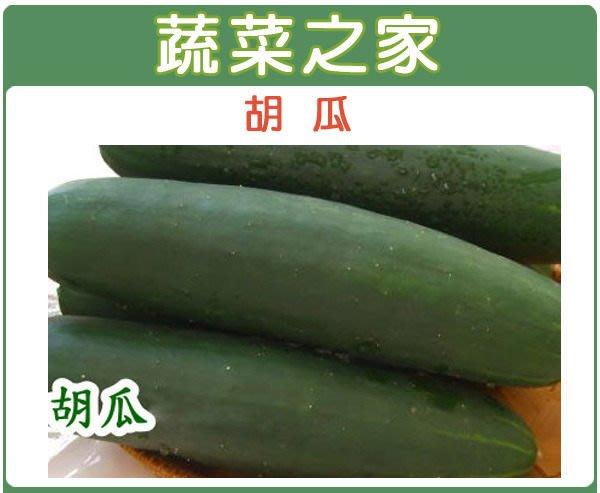【蔬菜之家】G12.胡瓜種子30顆(早生,雌花多,果長.蔬菜種子)