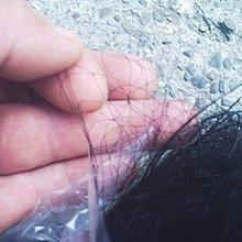 【連強二手商品】抓鳥網.鳥網..麻雀網6丈60尺長