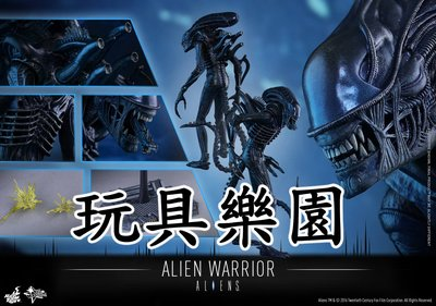 Alien Warrior 異形 全新啡盒未開 HOT TOYS Hottoys Aliens AVP 異獸戰 MMS354