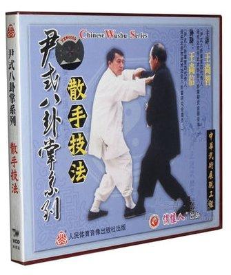 武術 王尚智 尹式八卦掌系列 散手技法(1碟VCD)