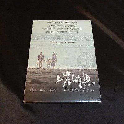 全新國片《上岸的魚》DVD 導演:賴國安 演員:鄭人碩 曾珮瑜